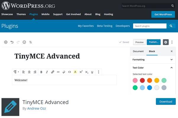 TinyMCE Advanced Plugin (WordPress)