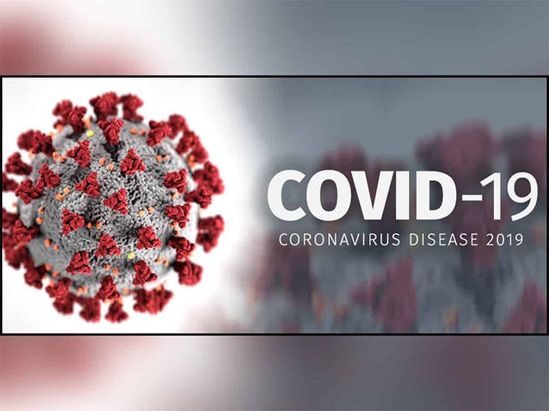 COVID-19 The 2020 Virus