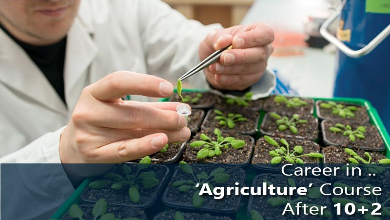 Career in 'Agriculture' Course After 10+2