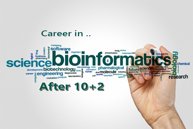 Career in Bioinformatics Course After 10+2