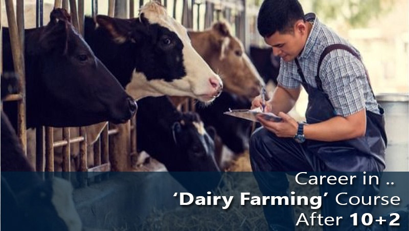 Career in 'Dairy Farming' Course After 10+2