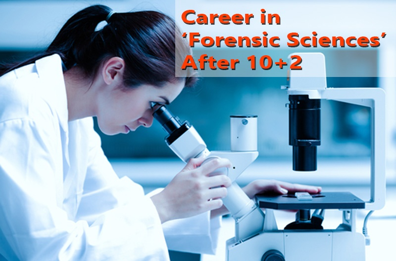 Career in 'Forensic Sciences' Course After 10+2