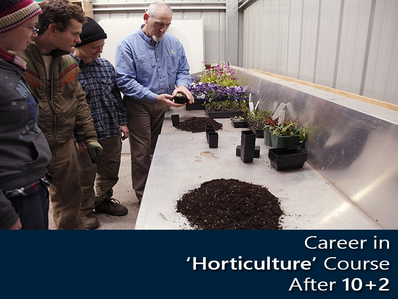 Career in 'Horticulture' Course After 10+2