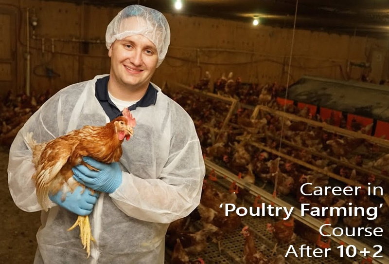 Career in Poultry Farming Course After 10+2