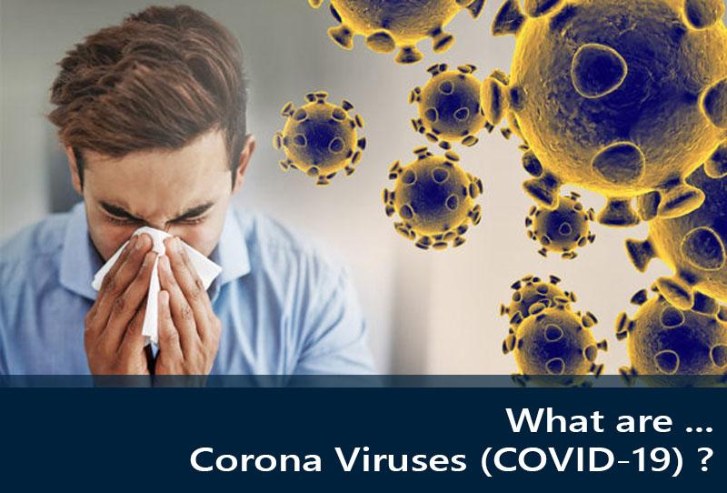 What are Corona Viruses (COVID-19) ?