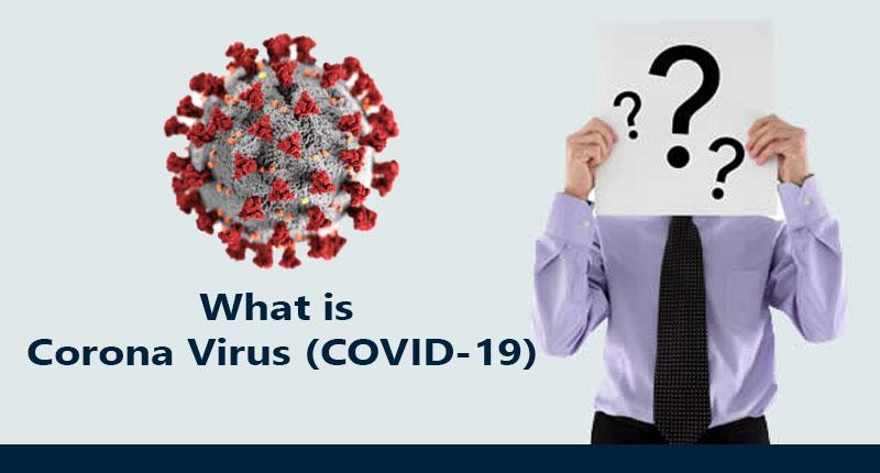 What is Corona Virus COVID-19