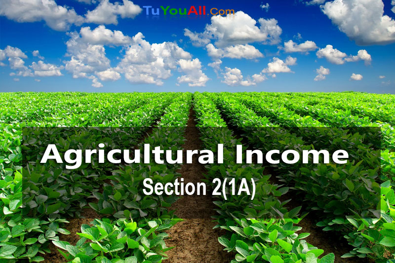 Agricultural Income and its Tax Treatment [Section 2(1A)]
