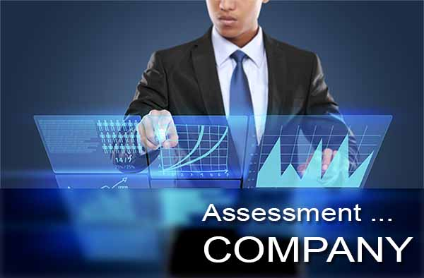 Assessment of Company