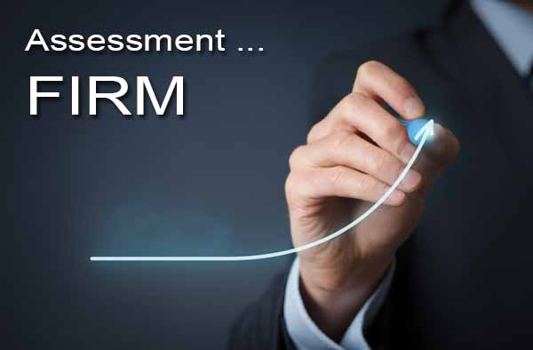 Assessment of Firm