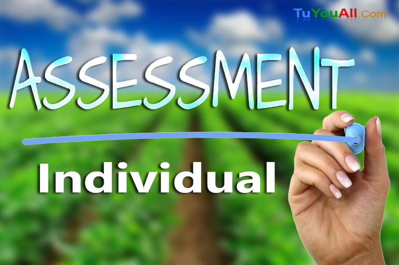 Assessment of Individual